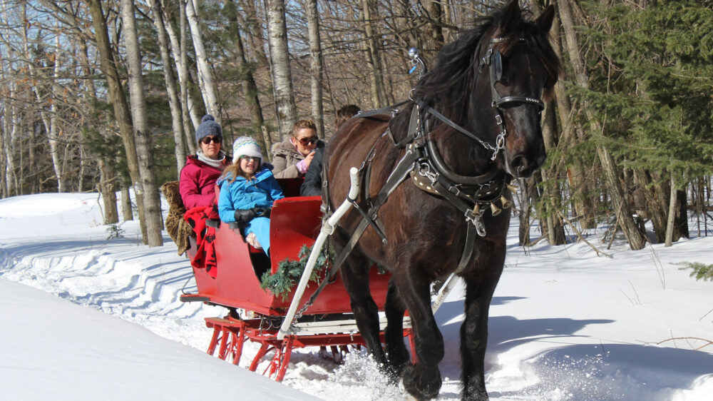 Sleigh Ride to Santa