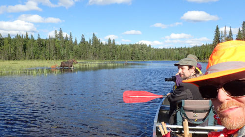Algonquin Adventure Tours