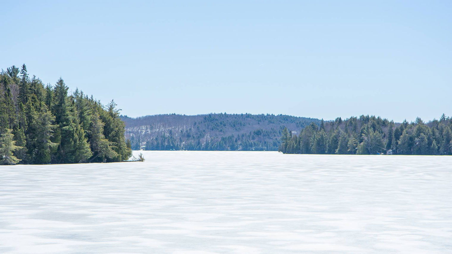Explore the Winter Wonder of Algonquin Park