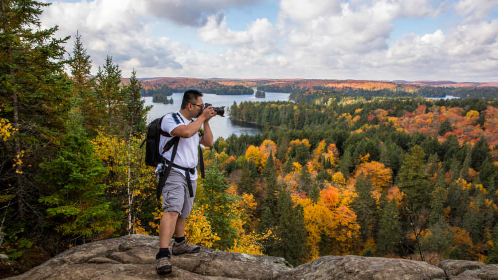 Best Places to Take a Fall Photo in Muskoka