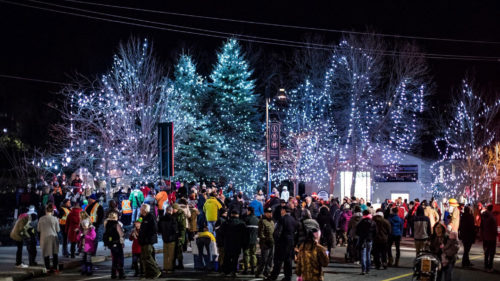 Santa's  Festival of Lights and Shopping Party