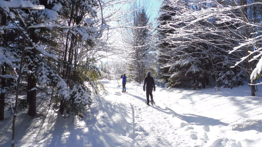 Snowshoeing Fun in Muskoka