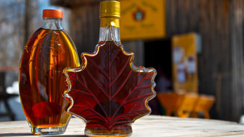 Muskoka Maple Trail Starts March 13