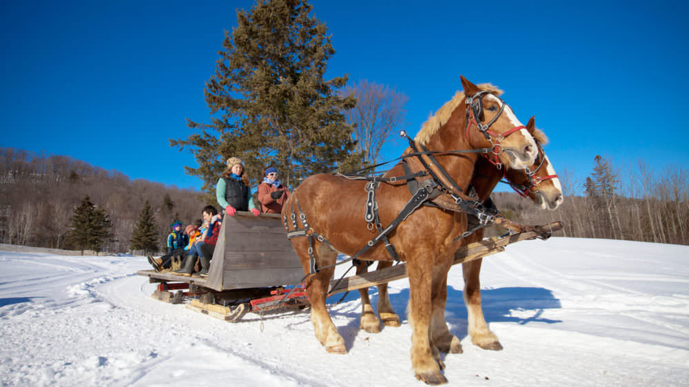 Sleigh and Wagon Rides